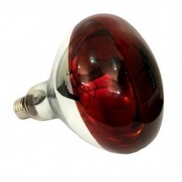 Lâmpada Infravermelho Medicinal 220V / 250W Halotech